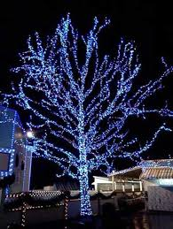 gorgeous outdoor tree lighting ideas and outdoor christmas yard