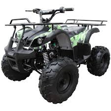 Wildfire 150 Atv Parts by All Products Coolster Atv Parts