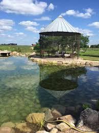 Backyard Swimming Ponds - blog natural swimming pools ponds design u0026 construction total