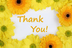 thank you flowers thank you flowers stock photos royalty free stock images