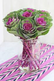 47 best ornamental cabbage bouquets images on