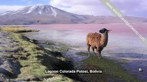 top places to visit in south america beautiful place