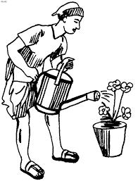 gardening kids website parents
