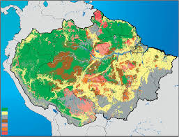 Amazon River On World Map by Great Rainforest Or The Greatest Rainforest Center For
