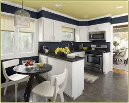 garage interior color schemes aha home design ideas color schemes for kitchens
