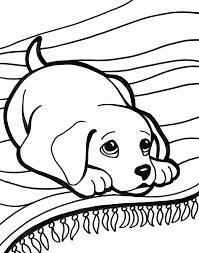 free animal coloring pages wallpaper download cucumberpress com