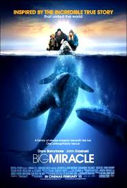 movie segments for warm ups and follow ups big miracle whaling