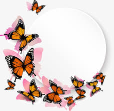 butterfly border box butterfly vector border vector png and