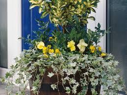 23 Diagrams That Make Gardening by Container Gardening Ideas Pictures U0026 Videos Hgtv