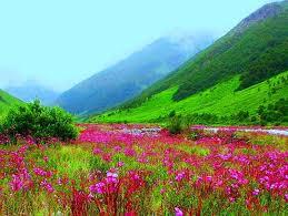 valley of flowers national park uttarakhand india youtube