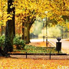 backgrounds for photography 10x10ft gold trees leaves park fence road ls autumn wedding
