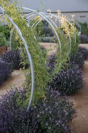 beautiful herb garden designs sunset