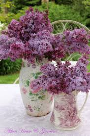 Lilac Flower by 1515 Best Lavender Lilacs Wisteria And Other Purple Flowers