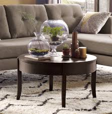 Terrarium Coffee Table by Terrariums Ideas For Your House Interiors