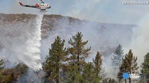 Wildfire California Video by Dying California Trees Raise Wildfire Risk