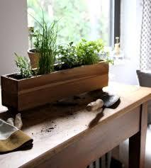 Kitchen Herb by Herb Garden Kitchen Window