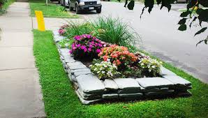 Sidewalk Garden Ideas Plants For The Hell Front Door And Curb Appeals 2