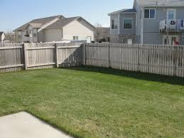 triyae com u003d backyard trees along fence various design