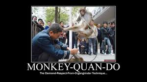 Martial Arts Memes - funny martial arts fighting motivational demotivational and meme s