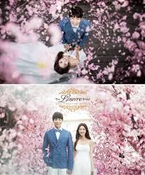 backdrop wedding korea in bloom a on korea studios photo sles