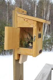 cool bird house plans cool bird house plans free bluebird purple martin brown wren