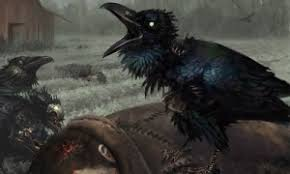 Crow Meme - create meme crow pictures meme arsenal com