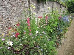 best of cutting flower garden u2013 homelivingdecor