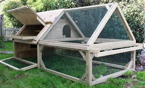 chicken coop design a frame with build an a chicken coop ideas