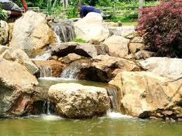 Aquascape Biofalls Pond Waterfall Filter Installation Pricing Lexington Central