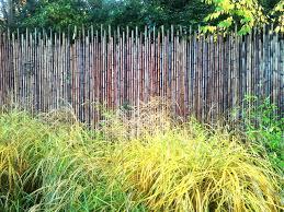 bambou feng shui 6 enclose my garden le jardin feng shui