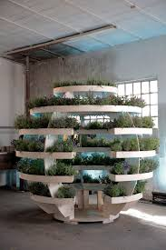 green dreams in the growroom ikea today