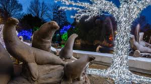 Turtle Back Zoo Lights by Real Estate Blog Maplewood And South Orange Nj
