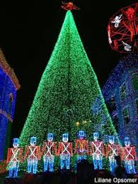 10 of the world u0027s best christmas trees christmas tree china and