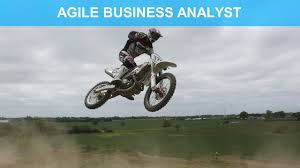 Ba Roles And Responsibilities Agile Business Analyst Need And Context Ba Central