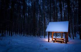 Bench Lighting Wallpaper Shop Table Light Snow Winter Bench Lighting Bench