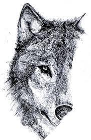 wolf sketch papermate kilometrico ballpoint pen nat cheong