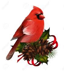 1 159 cardinal bird cliparts stock vector and royalty free