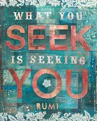 Seeking About What You Seek The Daily Quotes