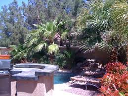 Backyard Bbq Las Vegas Tropical Hideaway Retreat 8 Min From Homeaway Las Vegas