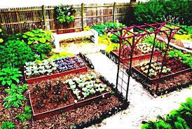 vegetable garden layout ideas designs anotdvrlistscom x awesome