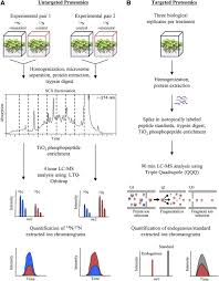 phosphoproteomic analyses reveal early signaling events in the