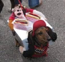 Carrying Halloween Costume Dog Halloween Costume Carrying Presentkindofpets Kindofpets