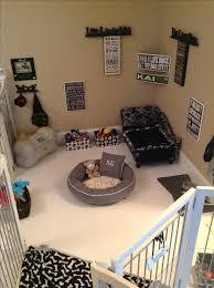 25 Best Ideas About Cool Stuff On Pinterest Cool Beds by Best 25 Dog Bedroom Ideas On Pinterest Dog Rooms Pet Corner