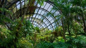 Balboa Park Botanical Gardens by Balboa Park Pictures View Photos U0026 Images Of Balboa Park