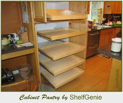 Roll Out Cabinet Drawers Full Image For Kitchen Cabinet Pull Out - Roll out kitchen cabinet shelves
