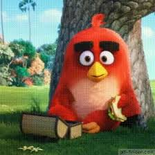 18 red images angry birds bird gif