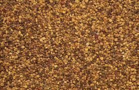 ground mustard can i use mustard instead of mustard seeds when pickling leaftv
