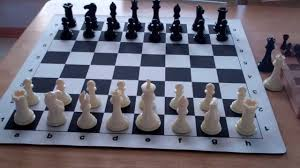 my thoughts on the wholesalechess com premier tournament chess set
