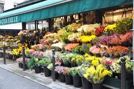 flower stores flower shop awesome shops fashion weeks and