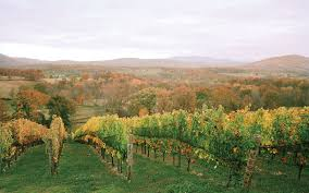 Virginia Wineries Map by America U0027s Unsung Wine Region Comes Of Age Travel Leisure